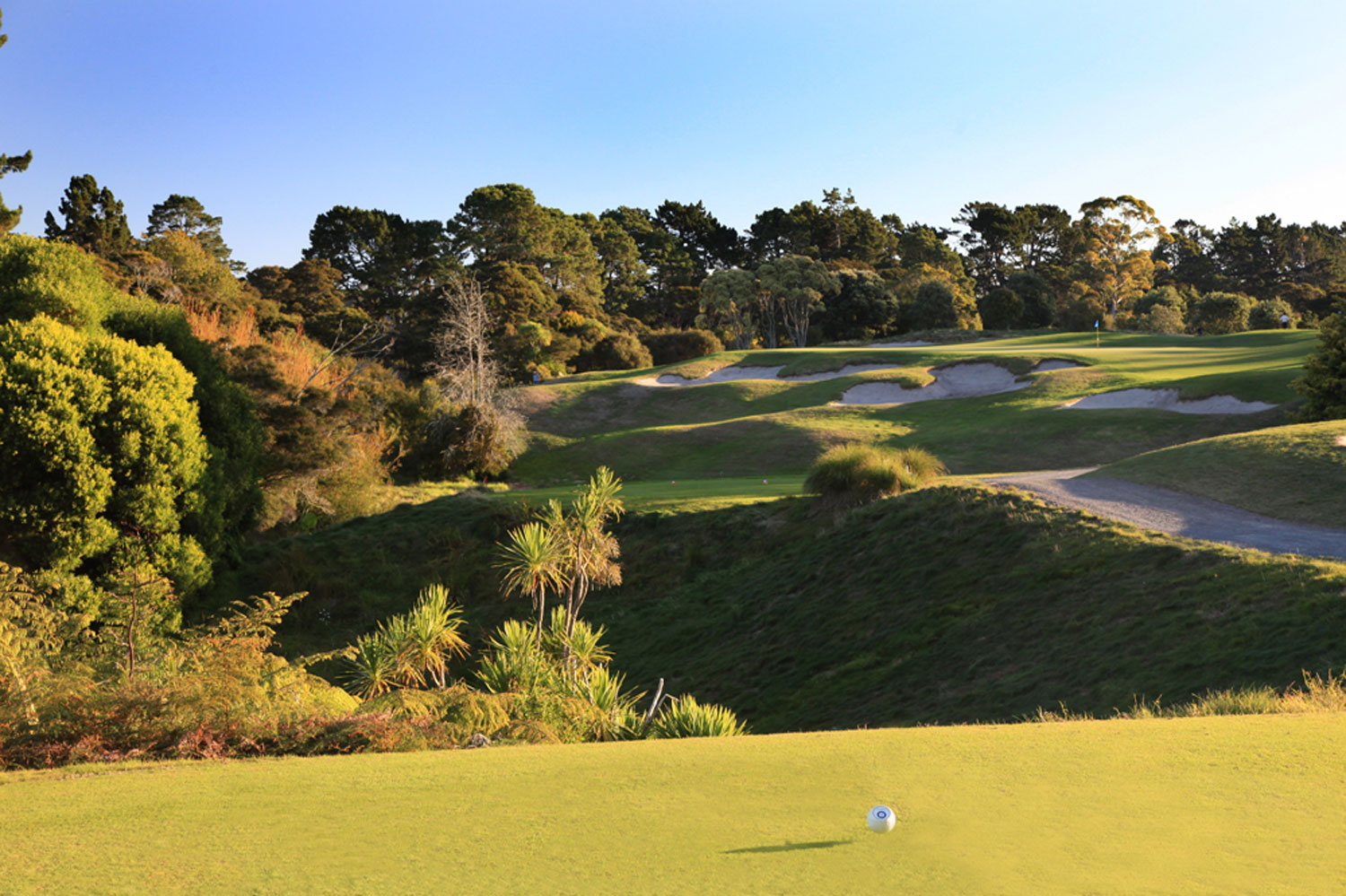 Titirangi-Golf-Club-11th-Tee