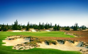 BRG-Danang-12th-Hole